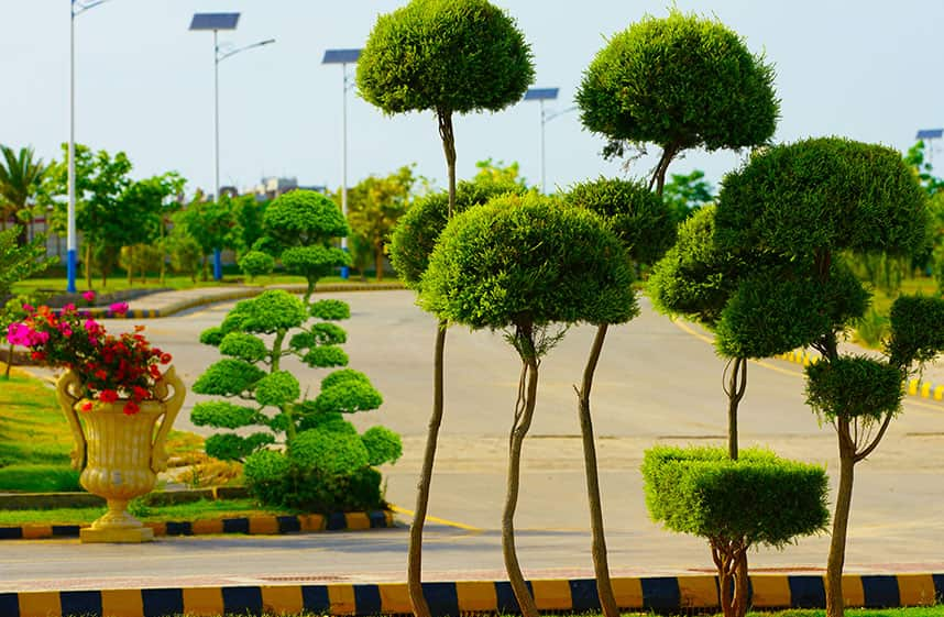 Caption Nature and a spread out infrastructure at Gulberg Islamabad